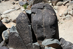 Three Rivers Petroglyphs (5864)