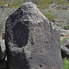 Three Rivers Petroglyphs (5869)