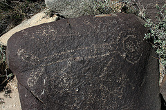 Three Rivers Petroglyphs (5872)