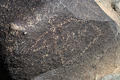 Three Rivers Petroglyphs (5886)