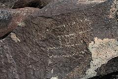 Three Rivers Petroglyphs (5889)