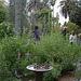 L.A. Garden Tour (6704)