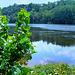 La Dordogne vers Laval