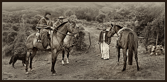 the real gauchos