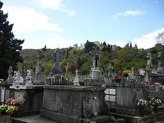 cimetière de Limoux