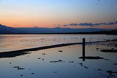 Salton Sea Sunset (4027)