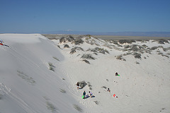 White Sands National Monument Nature Trail (6214)
