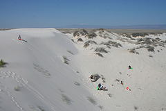 White Sands National Monument Nature Trail (6215)