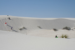 White Sands National Monument Nature Trail (6219)