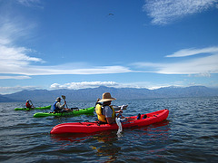 Kayaking On The Salton Sea (0730)