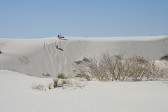 White Sands National Monument Nature Trail (6222)