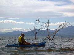 Kayaking On The Salton Sea (0746)