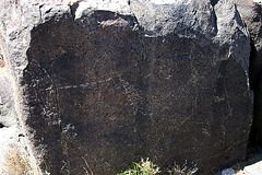 Three Rivers Petroglyphs (5891)