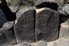 Three Rivers Petroglyphs (5892)