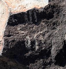 Three Rivers Petroglyphs (5893)