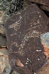 Three Rivers Petroglyphs (5894)