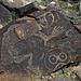 Three Rivers Petroglyphs (5902)