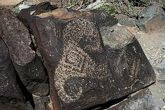 Three Rivers Petroglyphs (5904)