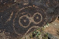 Three Rivers Petroglyphs (5905)