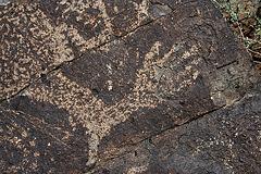 Three Rivers Petroglyphs (5906)
