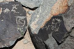 Three Rivers Petroglyphs (5912)