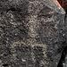 Three Rivers Petroglyphs (5913)