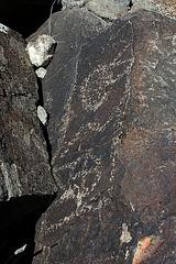 Three Rivers Petroglyphs (5915)
