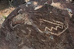 Three Rivers Petroglyphs (5917)