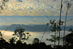 Panoramic view between the cloudscape