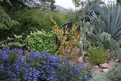 L.A. Garden Tour (6484)