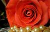 Rose et perles N°3