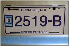 Bonaire Car