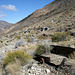 Trail Canyon - Mining Camp (4453)