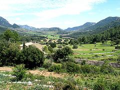 Orient - Mallorca