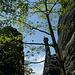 Klettern im Bielatal