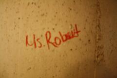 05.Graffiti.WMATA.WaterfrontSEU.SW.WDC.1May2010