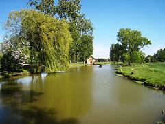 Les Ecrennes (77) - L'étang