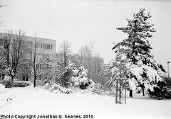 Snow in Haje, Prague, CZ, 2010