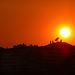 P1030426 Sunset in der Stadt