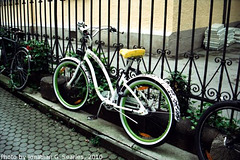 Bikes, Picture 2, Munchen (Munich), Bayern, Germany, 2010