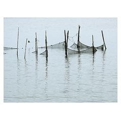 pêche et poésie