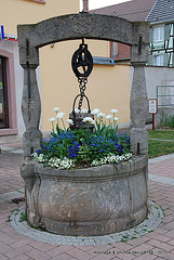 puit Wintzenheim