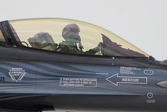 F16 - Fighting Falcon américain