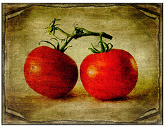 You Say Tomato Lenabem Textures