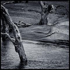 at the river bank......