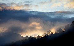 after rain horizon