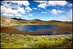 colorful laguna