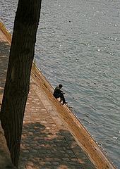 Solitude et oiseau