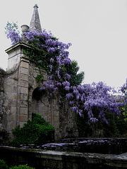 Amarante, Hostelry Casa da Calçada, garden (2)