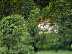 """""""songe d'une nuit d'été """": ma cabane dans les arbres"""
